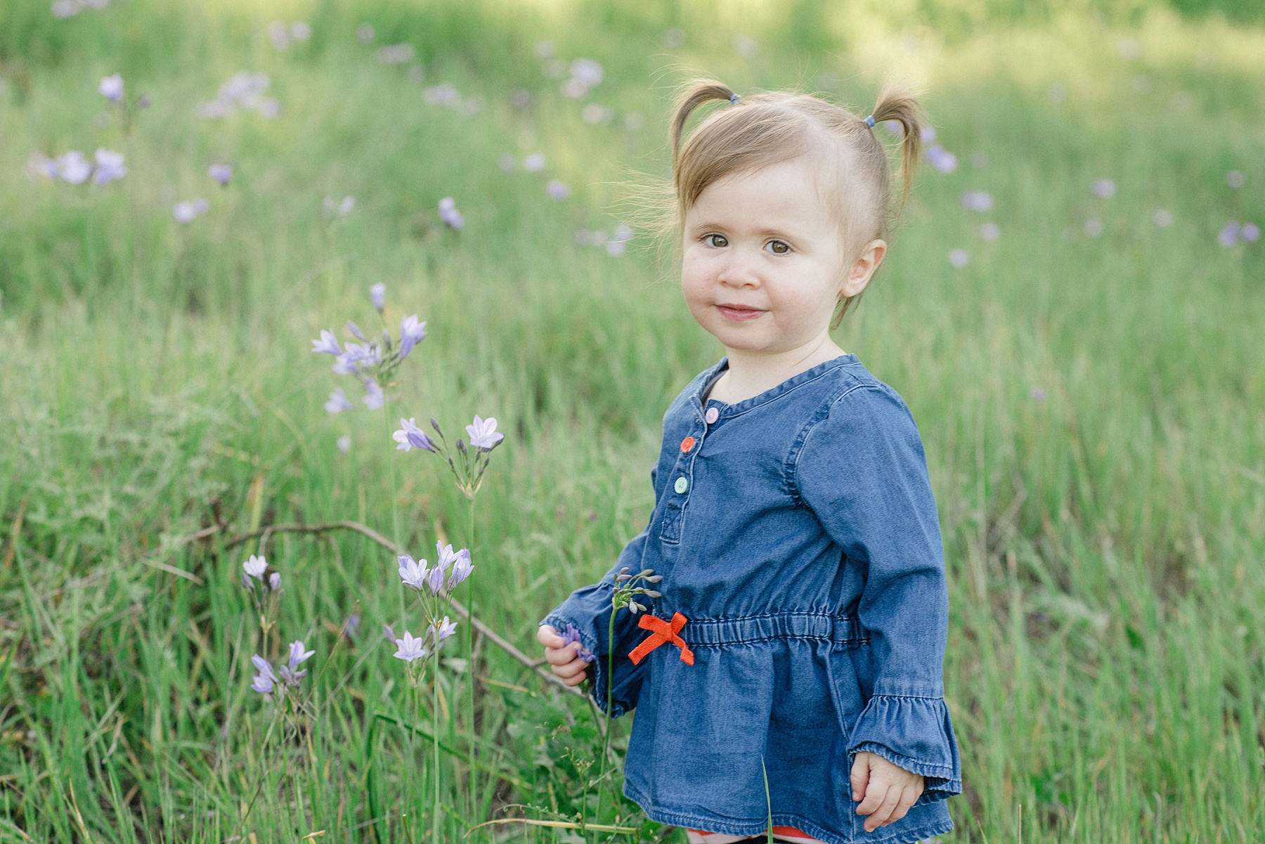 Roseville Toddler Photographer - Sarah Maren Photography
